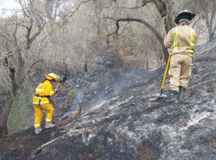 Incendio Haras La Laguna